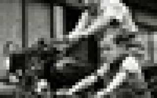 Руководство по эксплуатации и ремонту honda vfr800 98 01